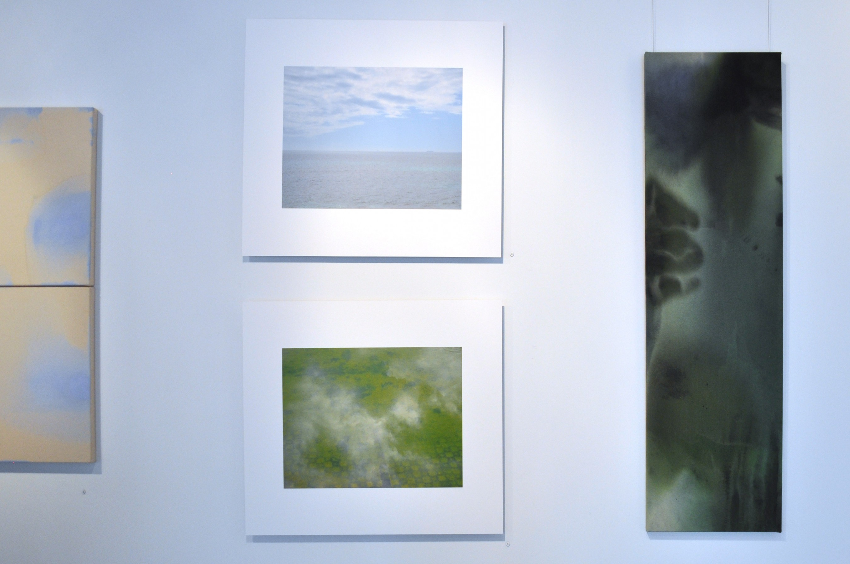 Installation View by Penny Coss